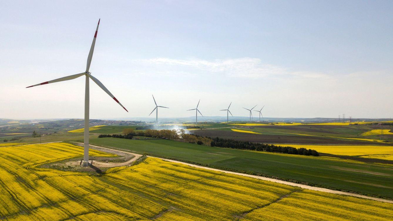 La AIE apuesta por un plan de recuperación sostenible para el crecimiento y el empleo