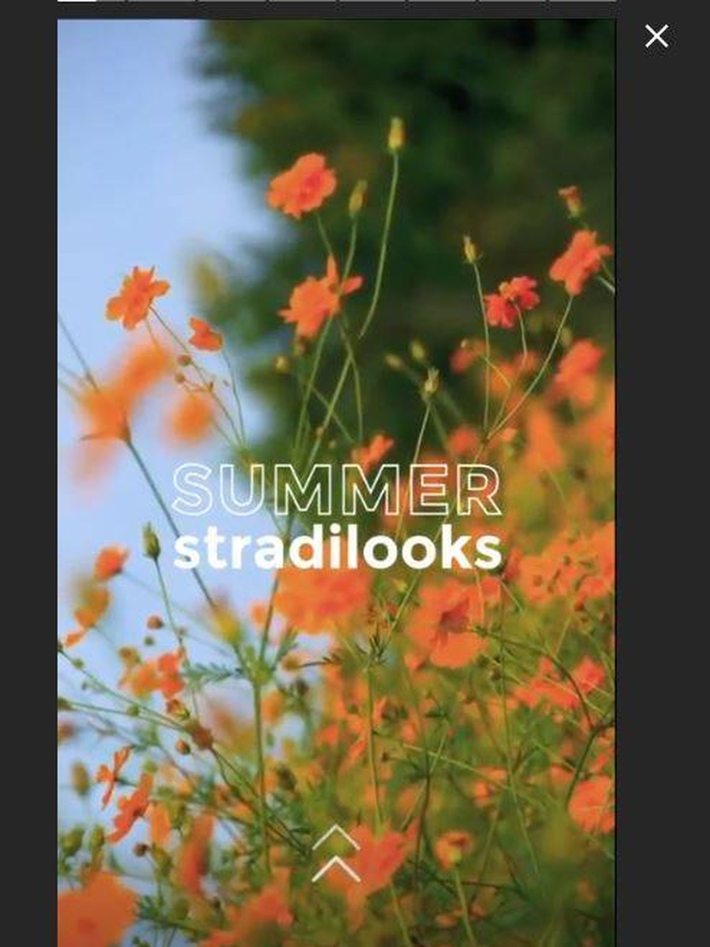 Instastories Summer Stradilooks de Stradivarius.