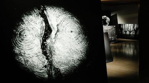 Inundaciones en Valencia y exposición de Jon Cazenave en Tabakalera: el día en fotos