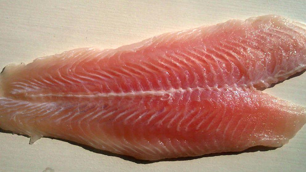 ¿Es malo comer panga? Las dudas sobre este polémico pescado, resueltas