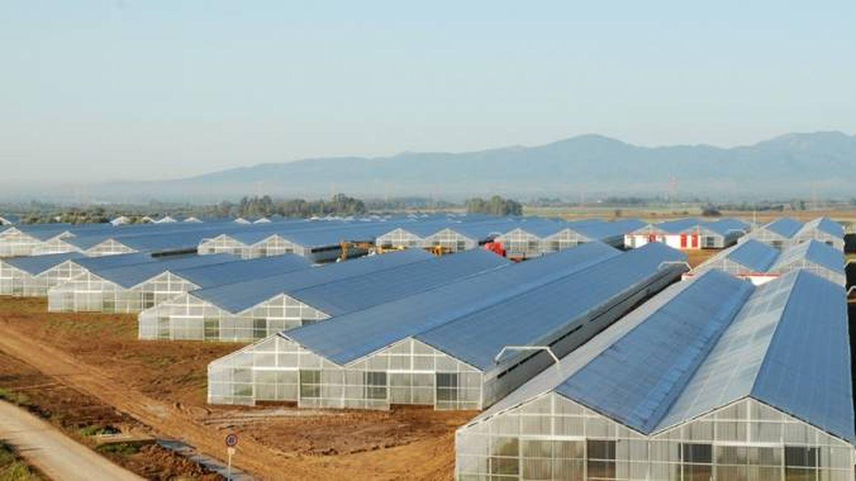 Planta solar en Cerdeña construida por GES
