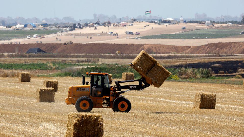 Foto: Trabajadores del campo