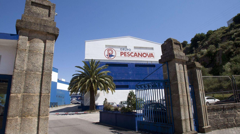Nueva Pescanova capitaliza 542 millones euros y Abanca aumenta peso a 97%