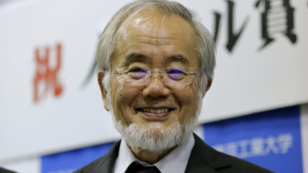 Foto: El científico japonés Yoshinori Ohsumi, premio Nobel de Medicina 2016 por el descubrimiento del mecanismo de la autofagia celular. (EFE)