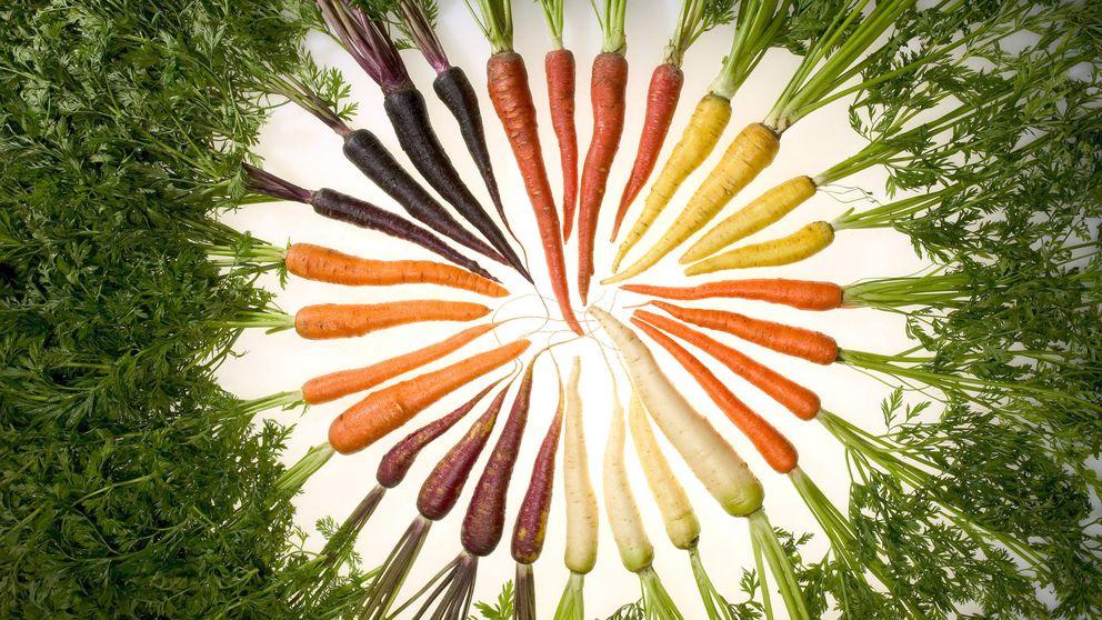 Cuando las zanahorias cambiaron de color (y se volvieron antiespañolas)
