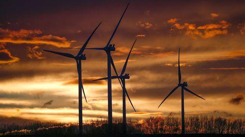 Las ONG premian las inversiones 'verdes' y alertan de las negativas