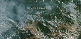 Post de Arde el Amazonas: están quemando el pulmón del planeta