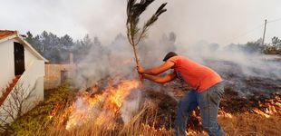 Post de 800 bomberos luchan en Portugal contra el incendio más complicado del verano