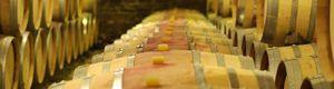 Invertir en el efímero arte del vino