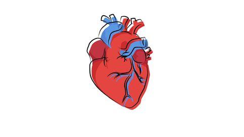 Así influye el latido del corazón a nuestra percepción del mundo exterior