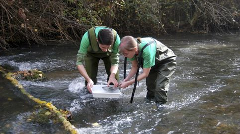 Muere ahogado un hombre en el río Henares a la altura de Alcalá