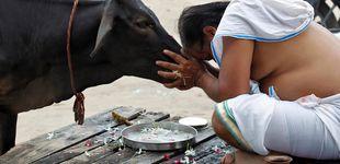 Post de Los estrictos vegetarianos que han construido un imperio del consumo de carne