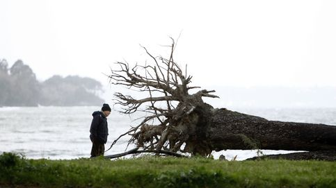Hasta 43 provincias en alerta por viento y nieve en Península y Baleares