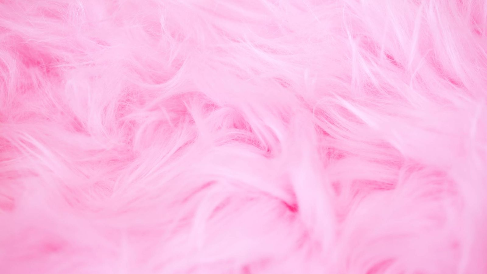 Foto: El colágeno ahora te hará ver la vida de color rosa. (Unsplash)