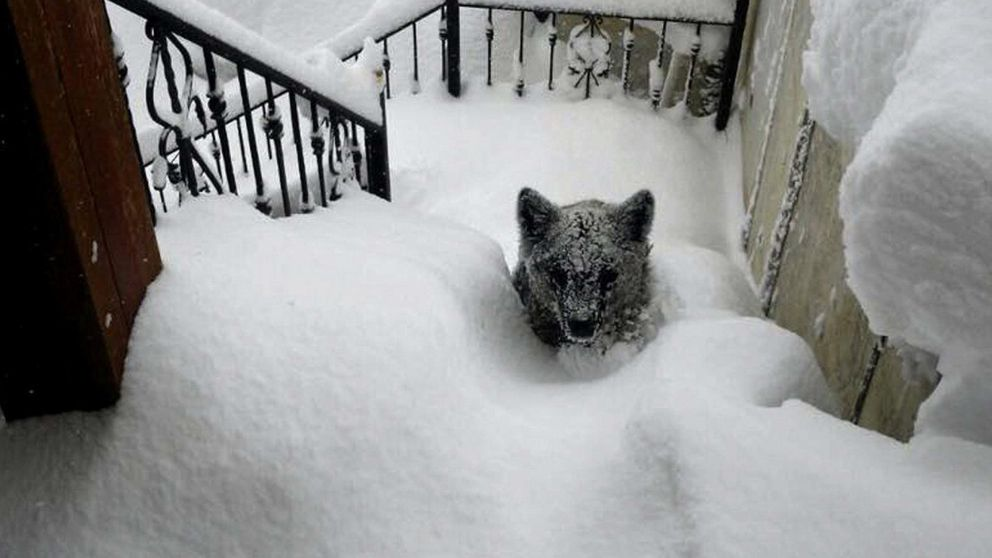 """Reinosa, la """"Siberia española"""" en una nueva ola de frío que deja a 30 provincias en alerta"""