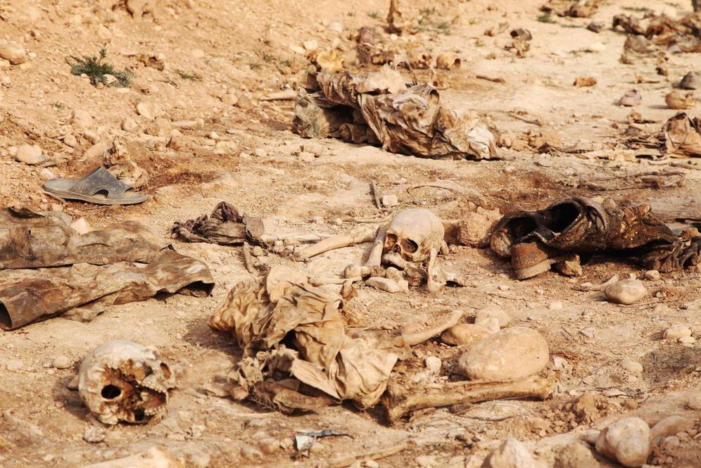 Foto: Cráneos humanos encontrados en una fosa común en las afueras de Sinjar, en febrero de 2015 (Reuters)