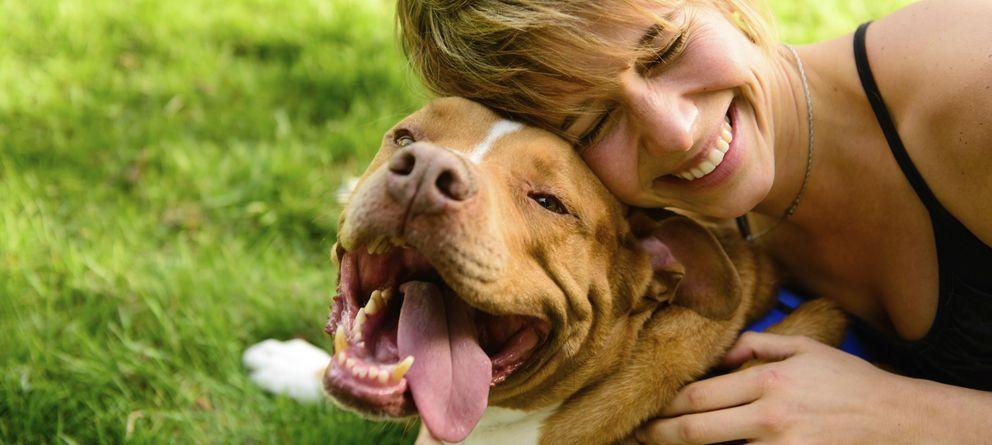 Resultado de imagen de perro y dueño