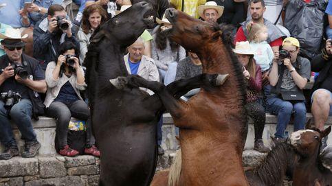 Muguruza ya está en cuartos y última jornada de la Rapa das bestas: el día en fotos