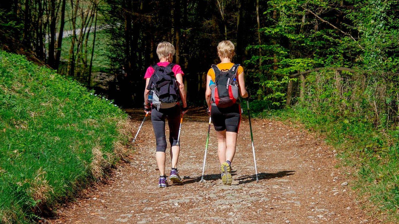 Caminar una hora al día es una gran forma de adelgazar a largo plazo (Foto: Pixabay)