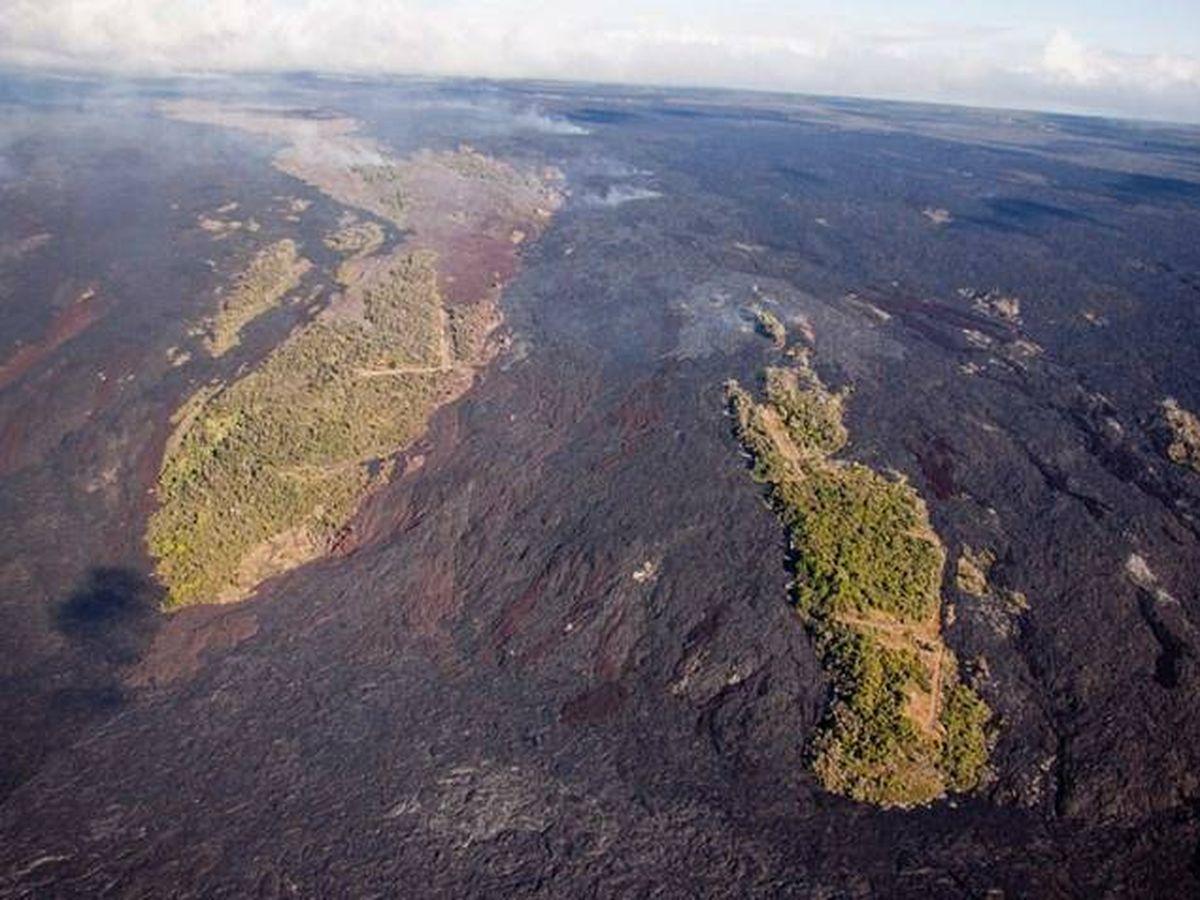 """Foto:  Estas zonas también son consideradas como """"islas de biodiversidad"""". (Involcán)"""