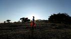 Etiopía bate el récord del mundo de plantación de árboles en un solo día