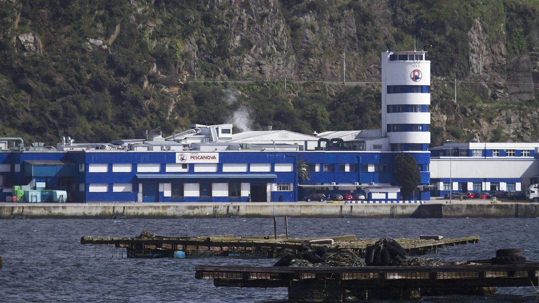 Foto: Factoría de Pescanova en la ría de Vigo (EFE)