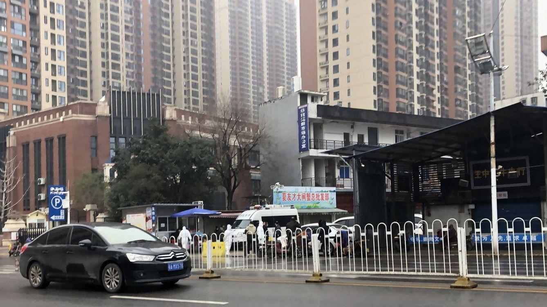 Los CDC chinos afirman que el covid-19 no nació en el mercado de mariscos de Wuhan
