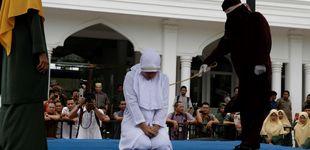 Post de Indonesia castigará con 100 latigazos a los cazadores furtivos