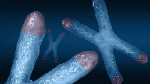 Podremos vivir más tiempo y más sanos (en los telómeros está la respuesta)