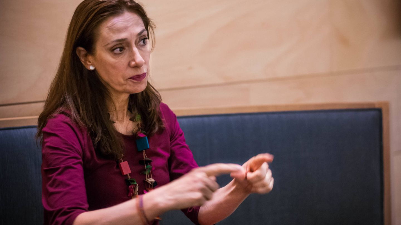 La diputada de Compromís/Podemos Rosana Pastor. (Carmen Castellón)