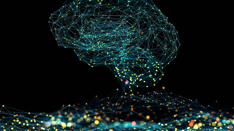Las puntuaciones de CI cada vez son más altas: ¿el ser humano es más inteligente que antes?