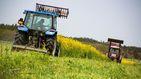 Corea del Sur destruye campos de flores para evitar la llegada de turistas