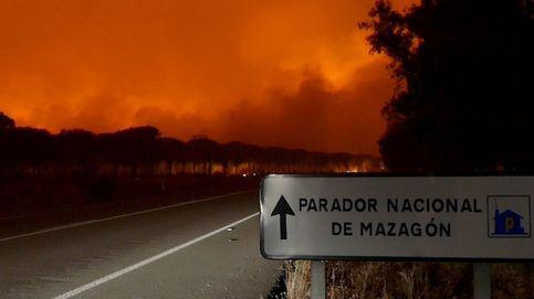 Incendios forestales: por qué España está ardiendo muy poco este año (por ahora)