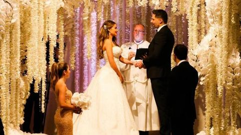 Pitbull, invitado de lujo en la boda de Sofía Vergara y Joe Manganiello