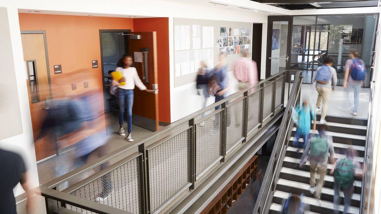 """Cómo se destruye una universidad: """"Esto se ha convertido en un parque de atracciones"""""""