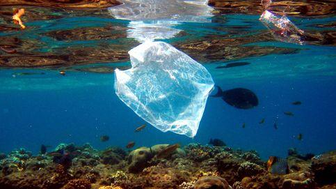 Alemania prohíbe usar bolsas de plástico desechables a partir de 2022