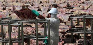 Post de Finlandia propone dejar de comprar carne de Brasil por los incendios del Amazonas