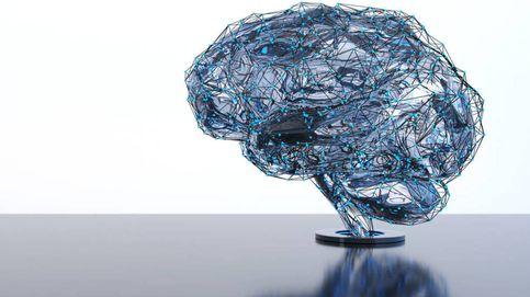 Tu 'primer' cerebro no está en tu cabeza sino en tus intestinos
