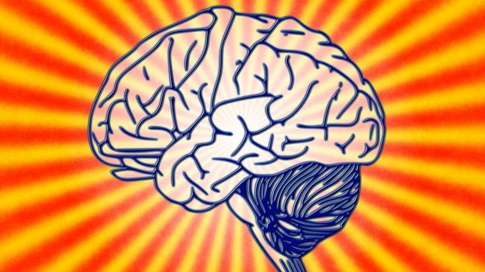¿Parte derecha o izquierda del cerebro? Aquí reside la creatividad de las personas