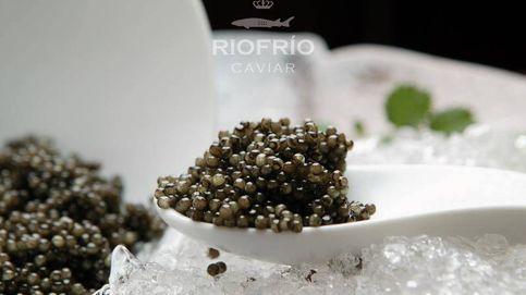 Así se hace el único caviar ecológico y español