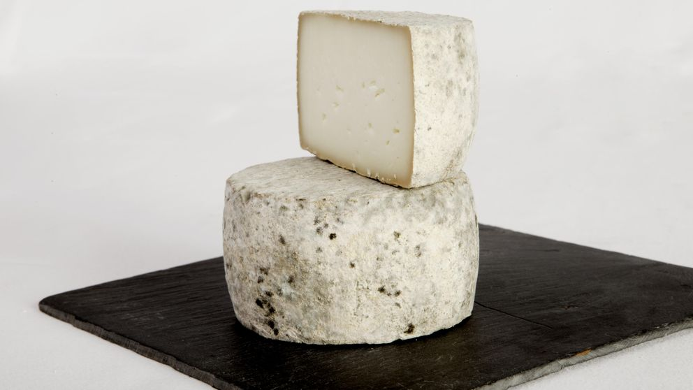 Queso Sierra La Solana, medalla de oro al mejor queso de oveja semicurado