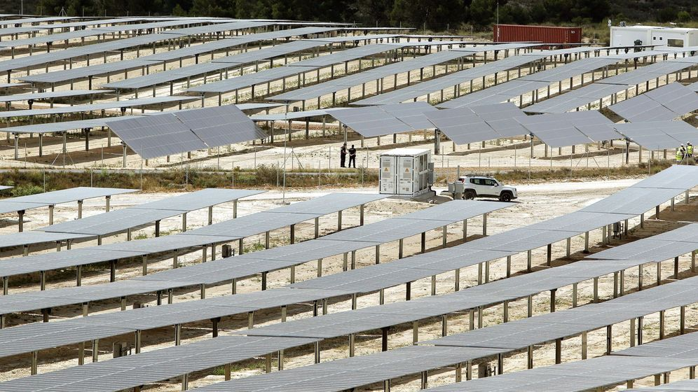 Foto: Planta solar en Alicante. (EFE)