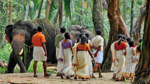 Kerala, un destino de contrastes en el fascinante universo de India