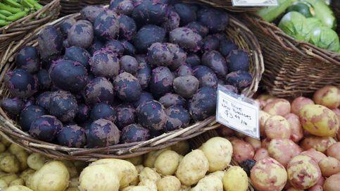 Las patatas azules son ricas en antocianinas: ¿las conoces?