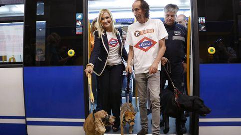 Los perros ya viajan en metro por Madrid