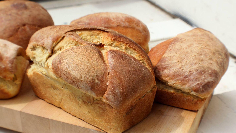 Los cereales integrales son la mejor opción para comer pan. (Rebecca Matthews para Unsplash)