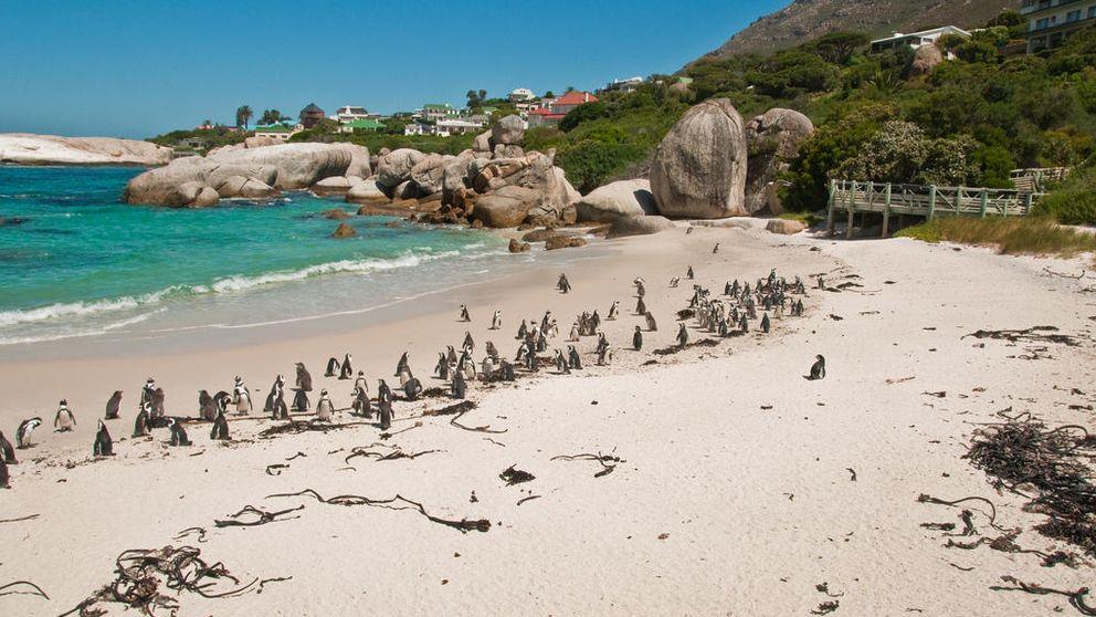 Balos, Las Catedrales o Gulpiyuri: así son algunas de las playas más curiosas del mundo