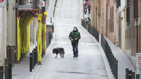 Mano dura con los dueños de perros: Había que tomar medidas, están abusando