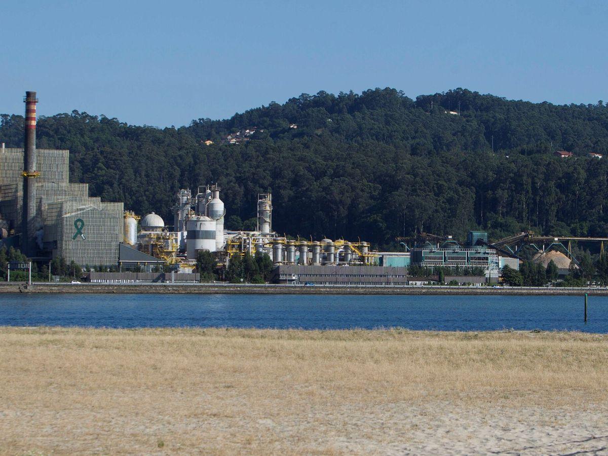Foto: Fábrica de Ence en Pontevedra. (EFE)
