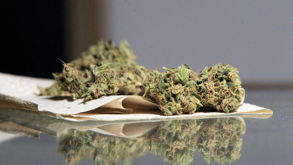 Foto: Uruguay comienza a vender marihuana de uso recreativo en las farmacias. (EFE)